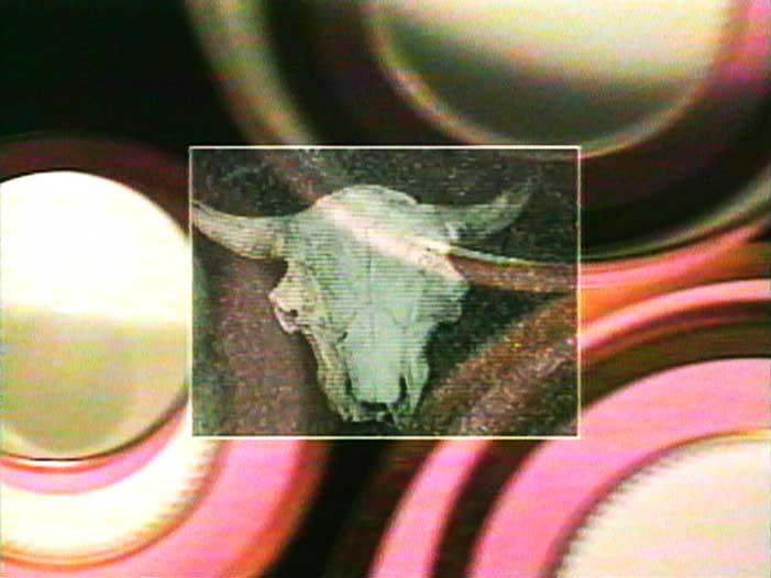 2194_Buffalo-Bone-China.jpg