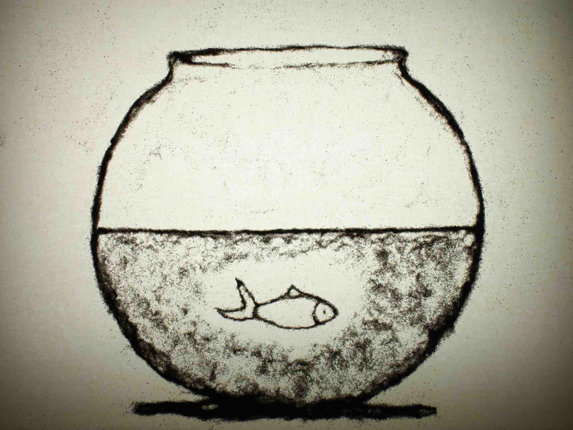 4372_HH_still_fishbowl_web.jpg