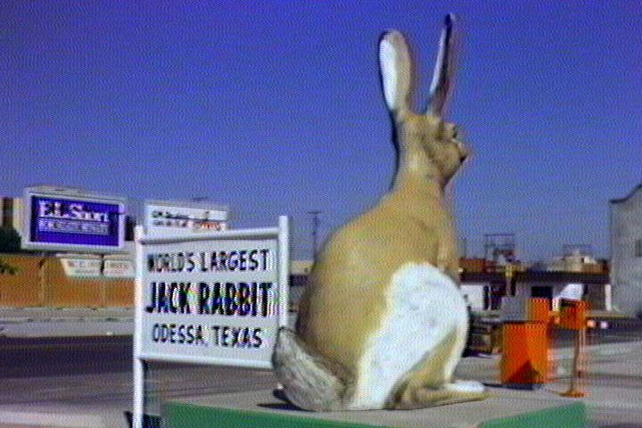 4588_worlds-largest-jack-rabbit.jpg